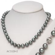 AC1120-2