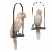 Cannary/ Parrot